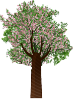 spring-tree.png